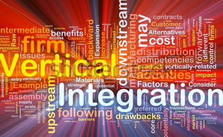 Vertical Integration (and the Extended Supply Chain)